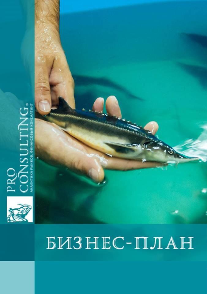 Рыба бизнес плана снабжение бизнес план