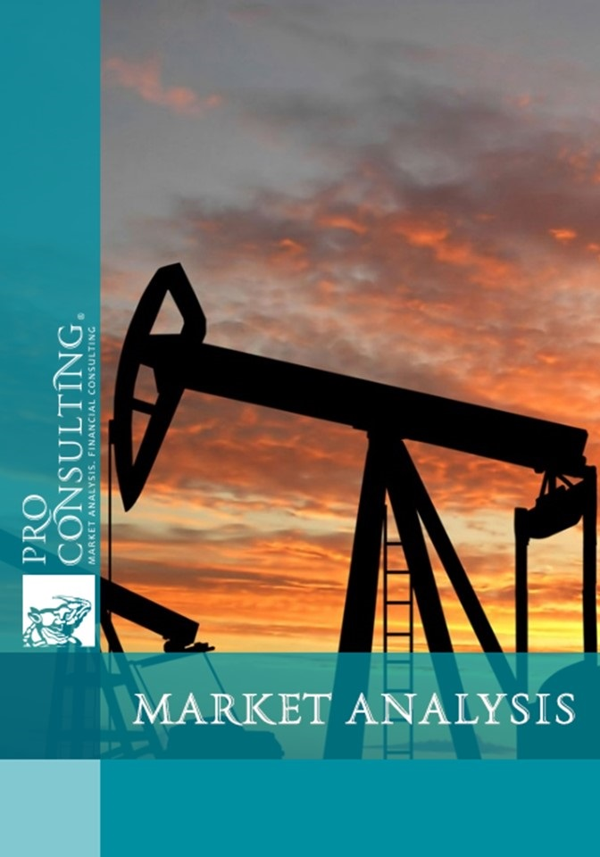 problems and prospect of marketing petroleum Marketing project topics problems and prospects of marketing in small-scale business in the problems and prospects of marketing petroleum products in.